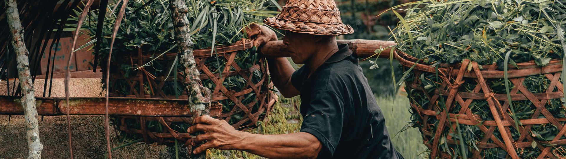 Bali Island Hopper | Topdeck Travel