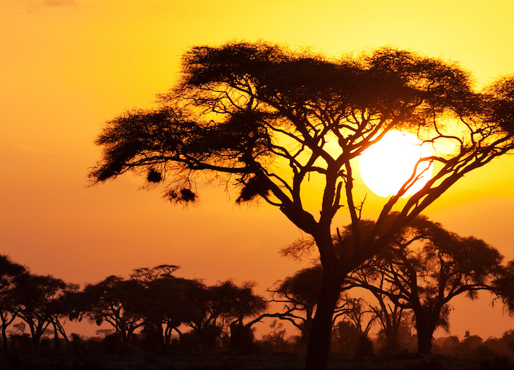 Orange-sunset-in-Kenya-Africa