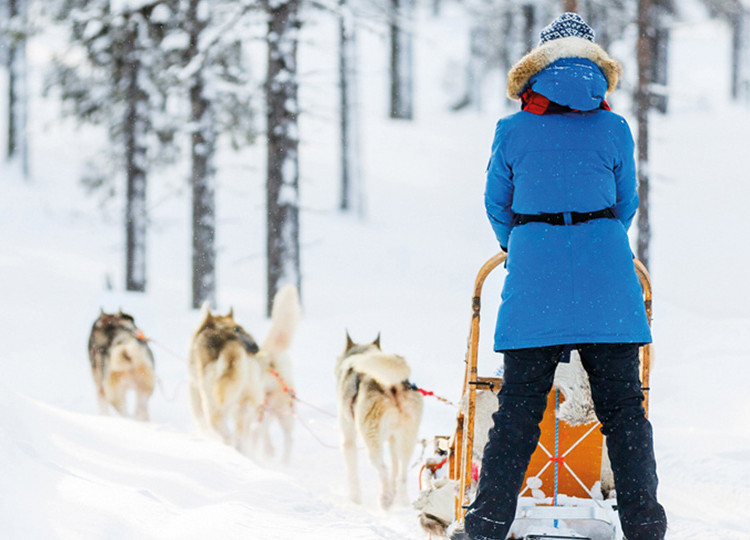 The Lapland Express | Topdeck Travel