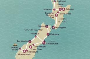 Kiwi Encounter